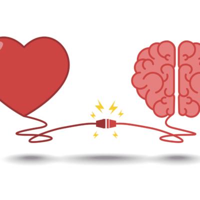 The Brain The Heart & The Formula
