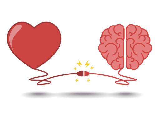 The Brain The Heart & The Formula