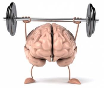 TRAIN THE BRAIN FOR 2016 SUCCESS
